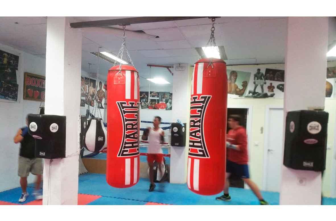 licencia de actividad de una escuela de boxeo